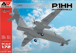 P.1HH HammerHead UAV (2nd flying prototype)